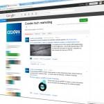 Posicionamiento web: Google muestra resultados de entradas en Google+