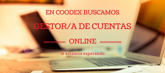 coodex buscamos gestor de cuentas online